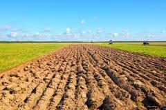 Campo dell'agricoltore Immagine Stock Libera da Diritti