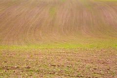 Campo dell'agricoltore di Brown Fotografia Stock Libera da Diritti