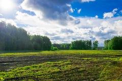 Campo dell'azienda agricola alla luce del sole, scena della campagna Fotografie Stock