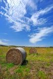 Campo dell'azienda agricola in Australia ad ovest Immagini Stock Libere da Diritti
