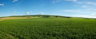Campo dell'azienda agricola dell'Idaho Fotografie Stock