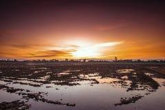 Campo dell'azienda agricola di agricoltura del paesaggio al tramonto Fotografie Stock Libere da Diritti