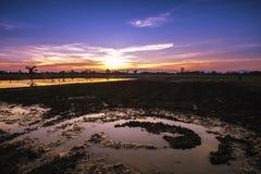 Campo dell'azienda agricola di agricoltura del paesaggio al tramonto Immagine Stock