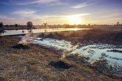 Campo dell'azienda agricola di agricoltura del paesaggio al tramonto Fotografia Stock Libera da Diritti