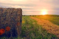 Campo dell'azienda agricola di estate con Hay Bales sui precedenti di bello tramonto Comcept di agricoltura Paesaggio del mucchio Fotografia Stock Libera da Diritti