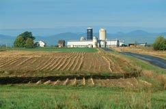 Campo dell'azienda agricola e fabbricati agricoli Fotografie Stock