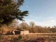 campo dell'azienda agricola fuori con agricoltura sparsa della natura vuota Immagini Stock Libere da Diritti