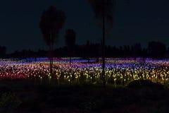 Campo dell'installazione di arte delle luci Fotografie Stock Libere da Diritti