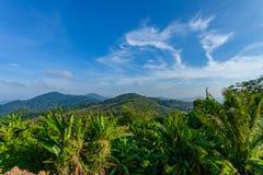 Campo della banana sull'alta montagna dell'isola di Phuket fotografie stock