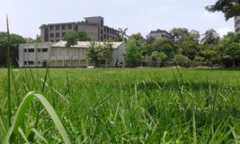 Campo della scuola Fotografie Stock