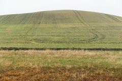 Campo della terra per agricoltura Fotografia Stock