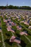 Campo delle bandiere Immagini Stock Libere da Diritti