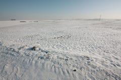 Campo dello Snowy Fotografia Stock