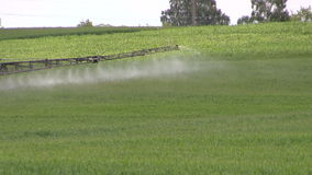 Campo dello spruzzo del trattore con l'antiparassitario chimico di estate stock footage