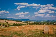 Campo después de la cosecha Imagenes de archivo
