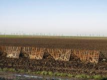 Campo di agricoltura Immagini Stock