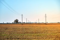 Campo di agricoltura con cielo blu e le linee elettriche Natura rurale nella terra dell'azienda agricola Paglia sul prato immagine stock