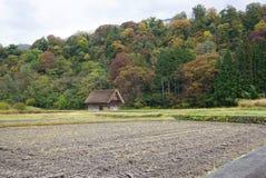 Campo di agricoltura con il fondo tradizionale del granaio Fotografia Stock