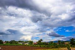 Campo di agricoltura con l'albero di pepe e bei nuvole e cielo Fotografia Stock Libera da Diritti
