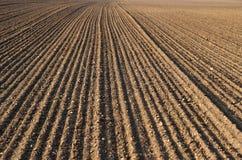 Campo di agricoltura dell'aratro Fotografia Stock