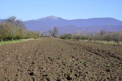 Campo di agricoltura dell'aratro Fotografie Stock Libere da Diritti