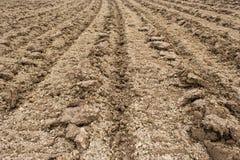 Campo di agricoltura dell'aratro Immagini Stock Libere da Diritti