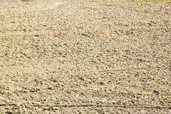 Campo di agricoltura dell'aratro prima della semina Immagine Stock