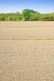 Campo di agricoltura dell'aratro prima della semina Fotografia Stock Libera da Diritti