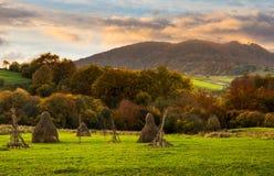 Campo di agricoltura in montagne ad alba Fotografia Stock