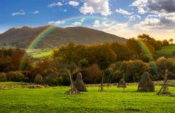 Campo di agricoltura in montagne ad alba Fotografie Stock