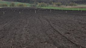 Campo di agricoltura per coltivazione archivi video