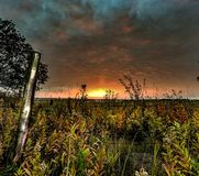 Campo di alba fotografia stock libera da diritti