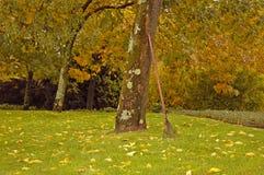 Campo di autunno Immagini Stock Libere da Diritti