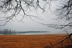 Campo di autunno Fotografia Stock