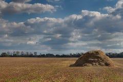 Campo di autunno Fotografia Stock Libera da Diritti