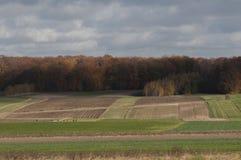 Campo di autunno in Polonia Immagini Stock Libere da Diritti