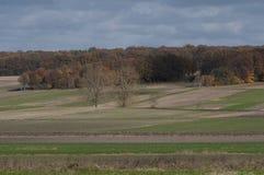 Campo di autunno in Polonia Fotografie Stock Libere da Diritti