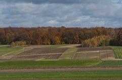 Campo di autunno in Polonia Fotografia Stock