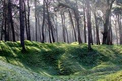 Campo di battaglia Vimy Ridge di WWI Fotografie Stock Libere da Diritti