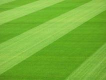 Campo di calcio Fotografia Stock