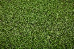 Campo di calcio artificiale verde dell'erba I precedenti verdi Immagine Stock Libera da Diritti