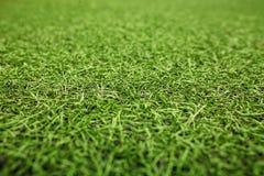 Campo di calcio artificiale verde dell'erba I precedenti verdi Fotografia Stock