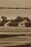 Campo di concentramento - Auschwitz-Birkenau, storia Fotografie Stock Libere da Diritti