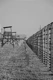 Campo di concentramento - Auschwitz-Birkenau, storia Fotografia Stock Libera da Diritti