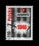 Campo di concentramento di Auschwitz, Polonia Fotografia Stock Libera da Diritti