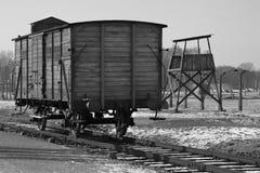 Campo di concentramento nazista di Birkenau - Polonia Fotografia Stock Libera da Diritti