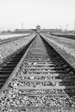 Campo di concentramento in Polonia Immagini Stock Libere da Diritti
