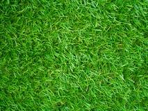 Campo di erba artificiale Immagine Stock