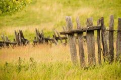 Campo di erba asciutta della campagna Fotografia Stock