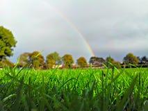 Campo di erba con l'arcobaleno Fotografia Stock Libera da Diritti